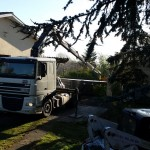 sud translev transport levage (15)